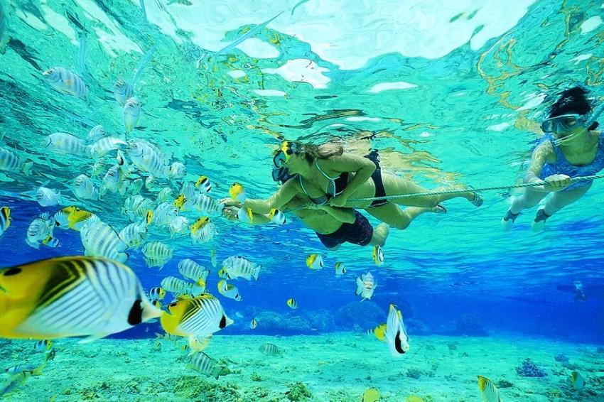 Snorkeling $59.99